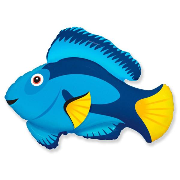 Fólia lufi, mini forma, kékhal